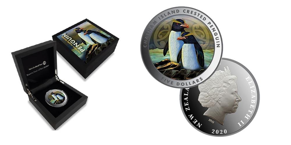 Чатемский пингвин Новая Зеландия