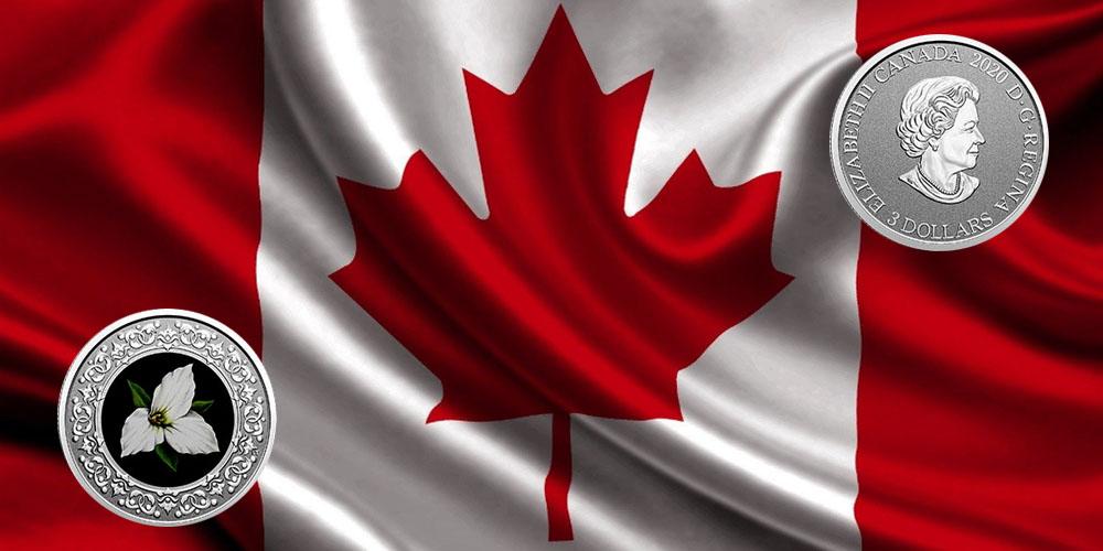 Белый Триллиум Канада