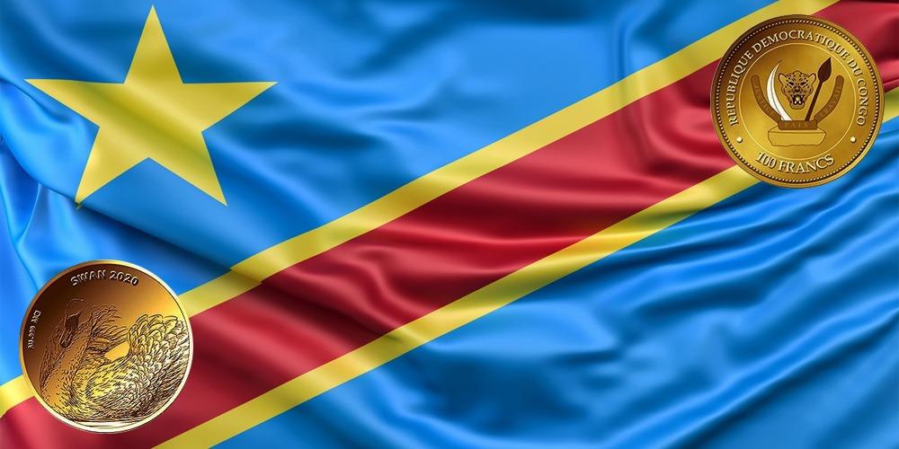 Лебедь Конго 2020