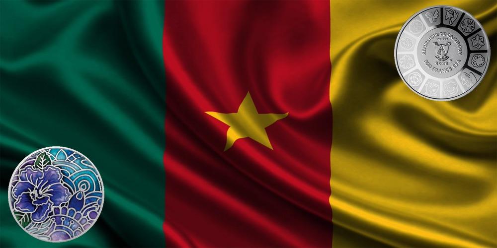 Анютины глазки Камерун 2020