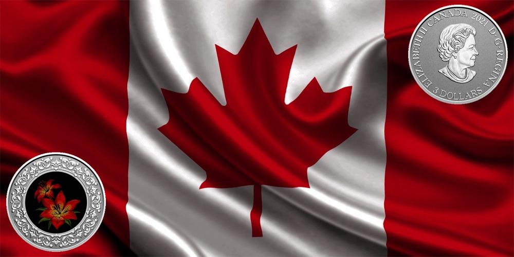 Красная лилия Канада 2021