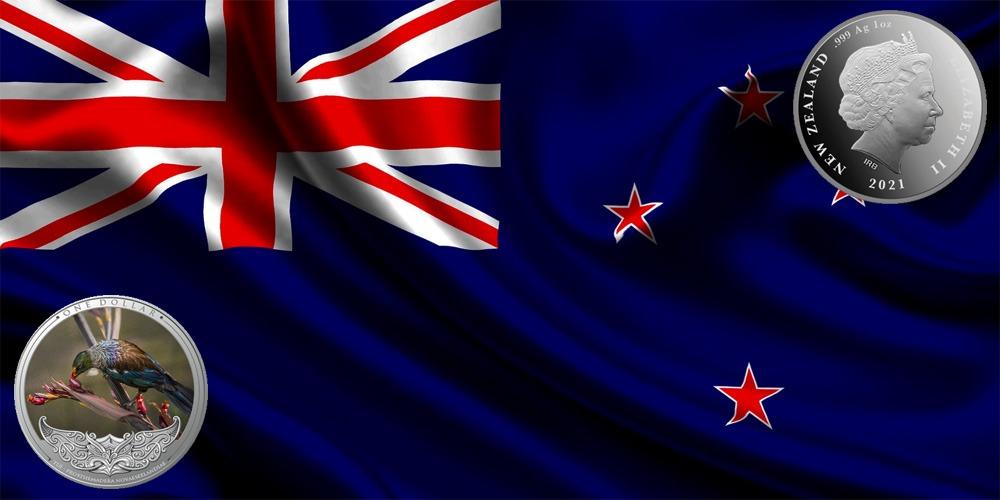 Новозеландский туи Новая Зеландия 2021