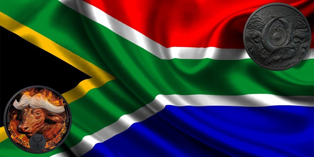 бизон ЮАР 2021