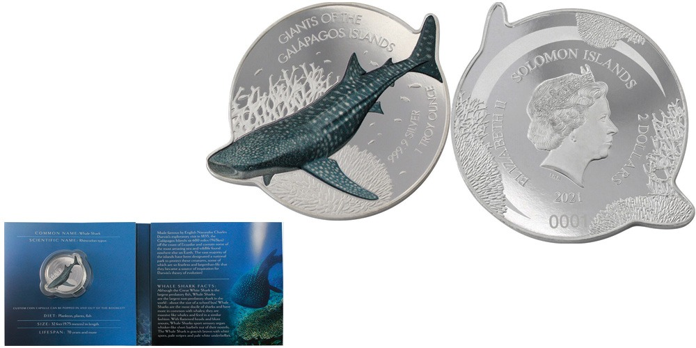 Китовая акула Соломоновы острова 2021