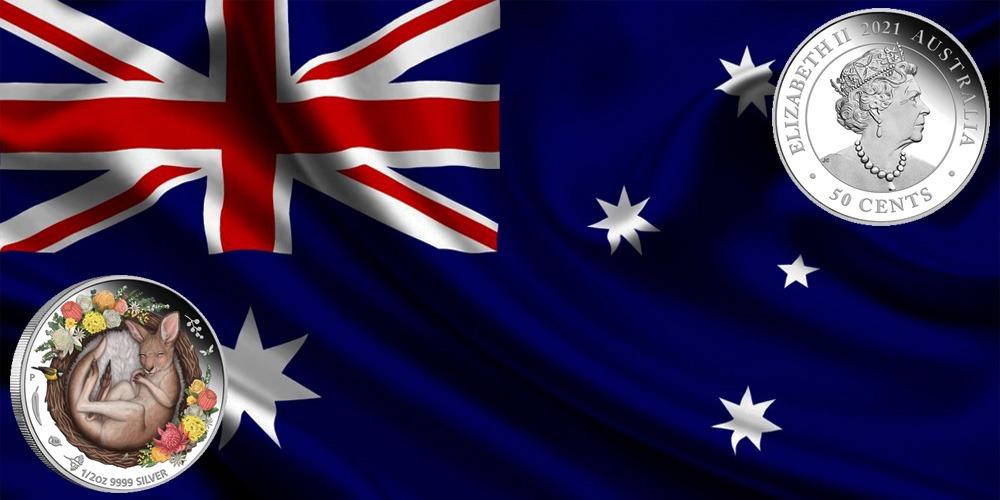 спящий кенгуру Австралия 2021