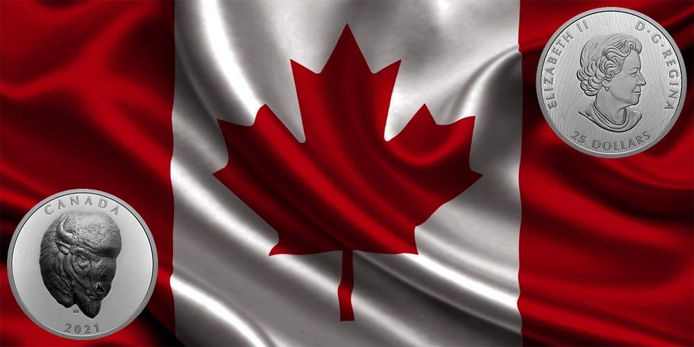 бизон Канада 2021