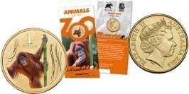 1 доллар 2012 Австралия — Орангутанг