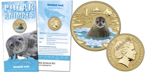 1 доллар 2013 Австралия — Тюлень Уэдделла