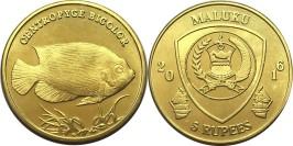 5 рупий 2016 Малуку (Молукку) — Рыбы — Центропиг двухцветный