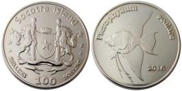 100 шиллингов 2016 остров Сокотра — Скалярия — экзонумическая монета