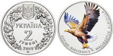 2 гривны 2019 Украина — Орлан-белохвост (Орлан-білохвіст)