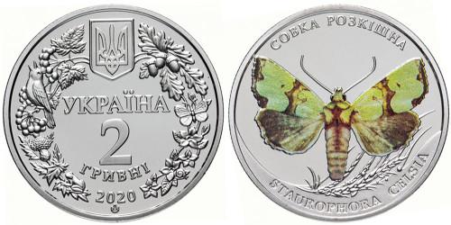 2 гривны 2020 Украина — Совка роскошная